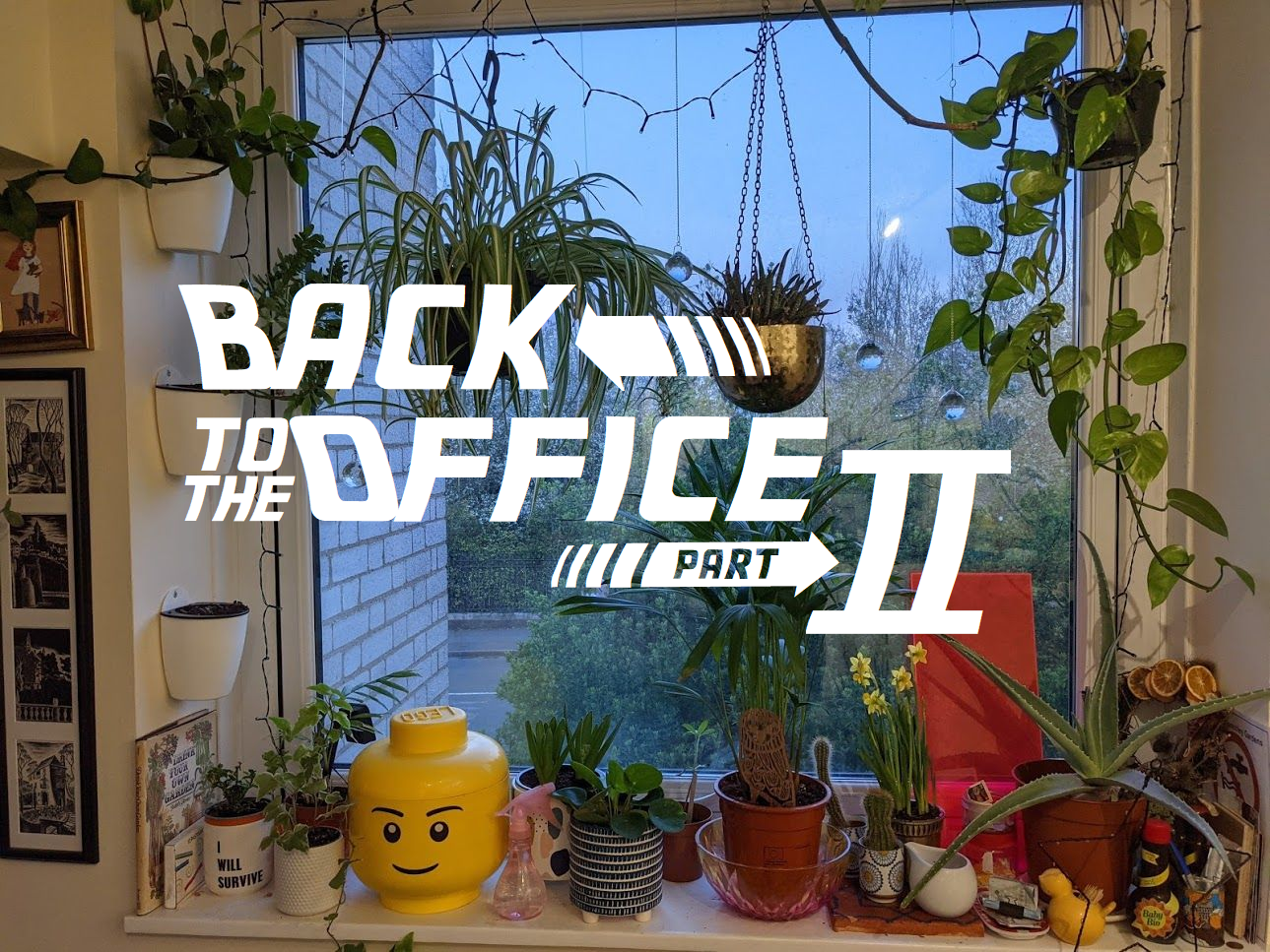 Back to the office: Part II